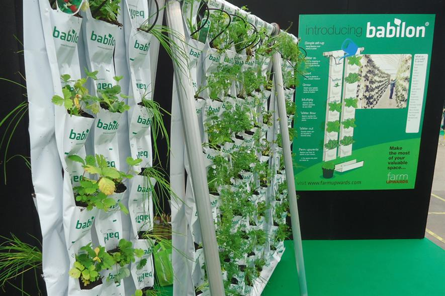 Babilon: vertical farming option
