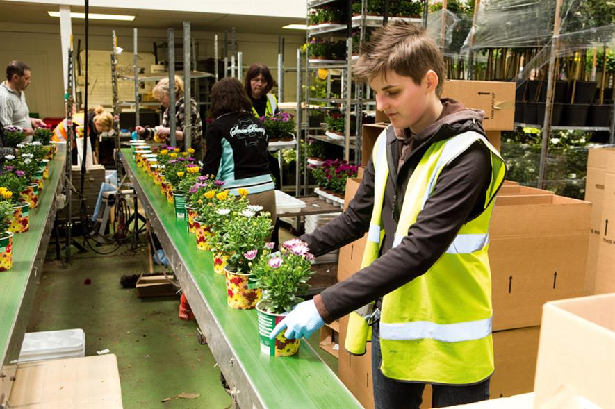 Nursery staff: industry becoming more reliant on flexible workforce