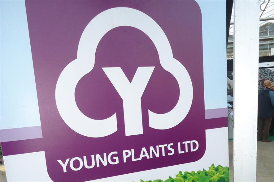 Young Plants: Newey business