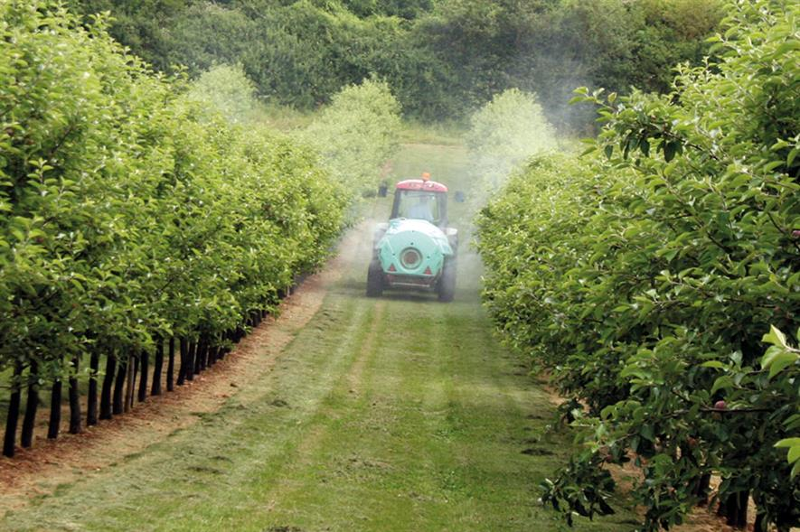 Spraying: all insecticide stocks are likely to be used up - image: HW