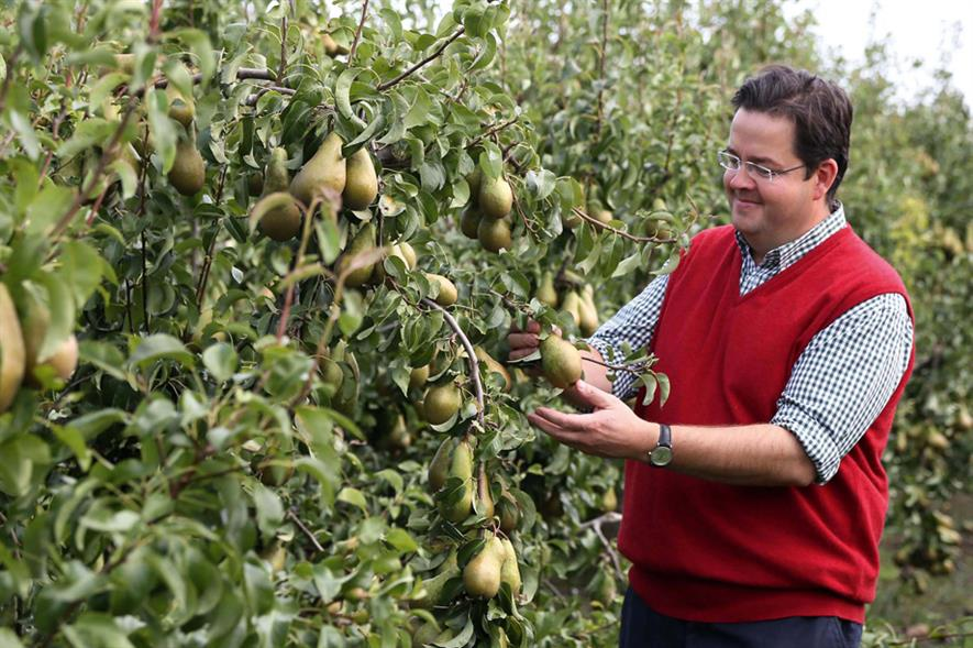 Pears: Waitrose sales increase