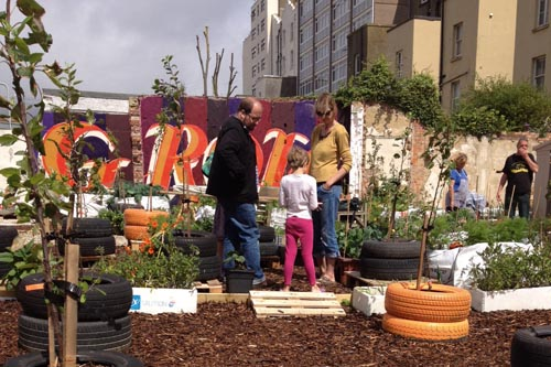 Moveable Feast: temporary allotment set up on derelict housing site