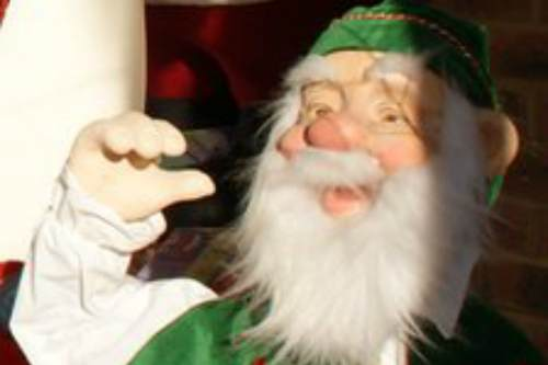 Thieves were caught on CCTV making off with the charity elf - image: Woodcote Garden Centre
