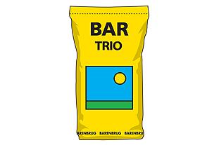 Bar Trio  Image: Barenbrug