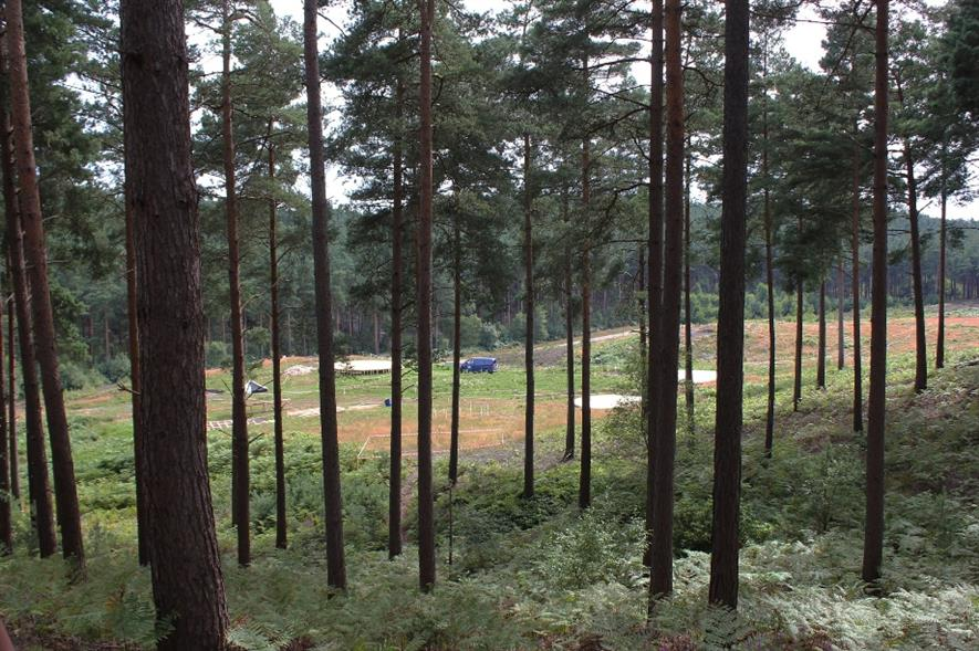 Thor movie set under construction in Bourne Wood - credit: Tim Sheerman-Chase/Flickr (CC BY 2.0)