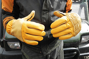 Rostaing Woodcutter's Gloves - image: HW