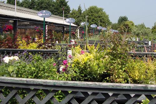 Garden centre sales - Image: HW