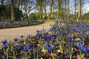 Dunham Massey Winter Garden. Pic: NT/Alan Novelli
