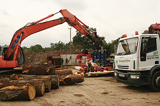 Gristwood & Toms site processes 15,000 tonnes of wood a year, mostly for biofuel - image: HW