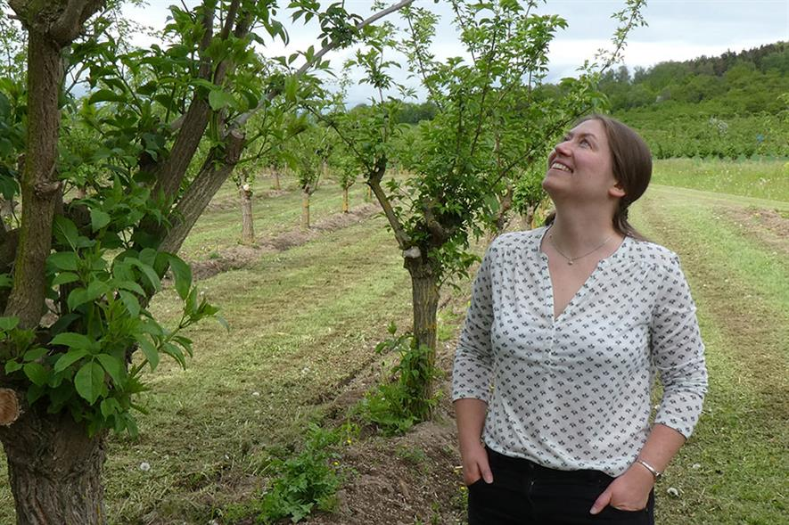 Alice Jones visited several elder farms across Europe and North America, including grower Stefan Hommer in Rhineland, Germany - credit: Nuffield