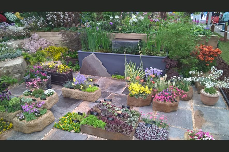 The Alpine Garden Society 'Out of the Woods' garden for RHS Chelsea Flower Show 2016