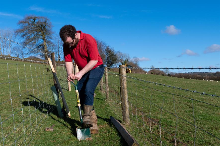 Area ranger James Robbins breaks ground for the new hedge at Buckland Abbey - credit: Alex Prain/NT