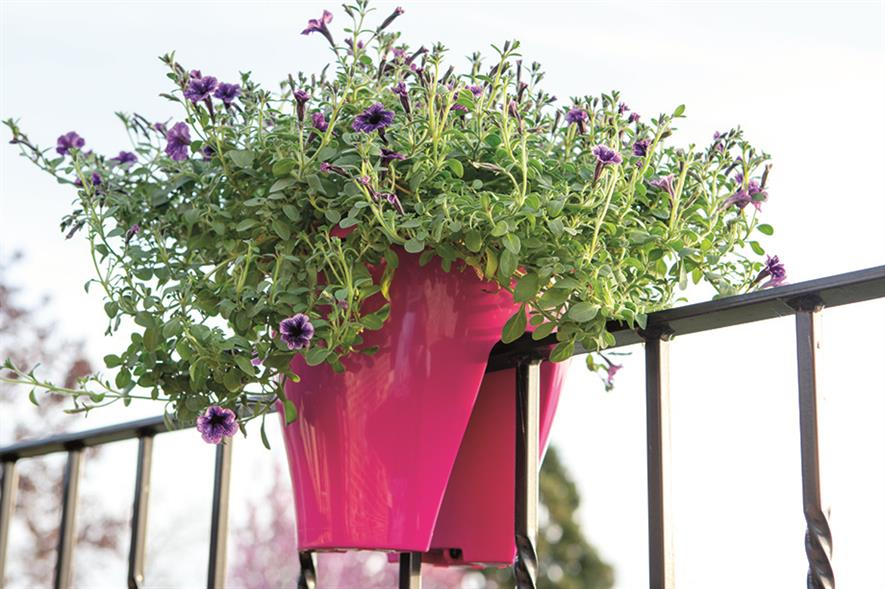Formats: Borneo planter to sit on railings - image: BATO
