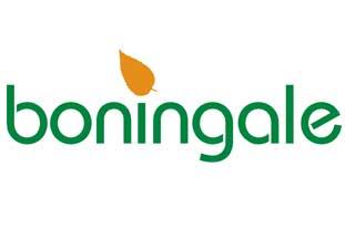 Boningale's new corporate logo - image: Boningale