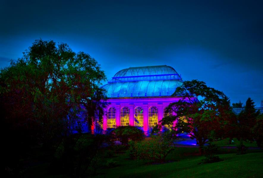 RBGE is extending its season with the power of light Picture: Lloyd Smith