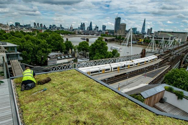 Green roofs help reduce the effects of climate change. Image: Bridgman & Bridgman