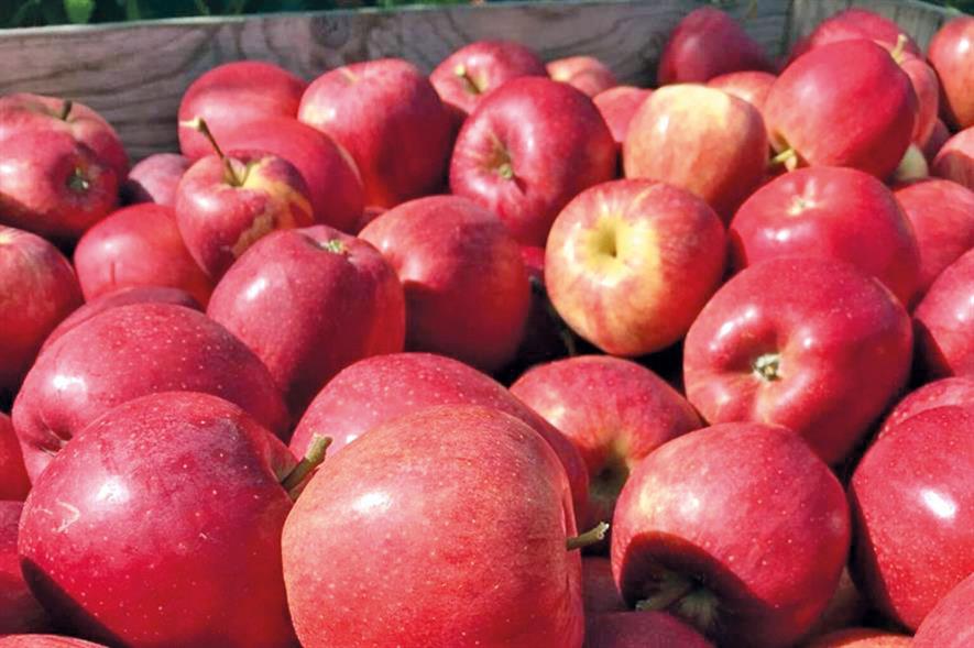 Fresh fruit: unusual demand peaks due to coronavirus - credit: British Apples & Pears
