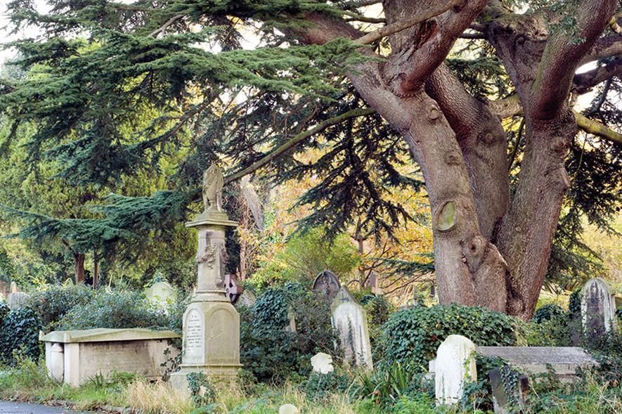 Image: Brompton Cemetery