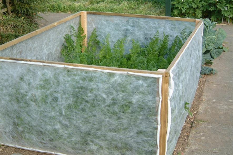 A carrot rootfly barrier, one of Garden Organic's many crowd-sourced experiments - image: Garden Organic