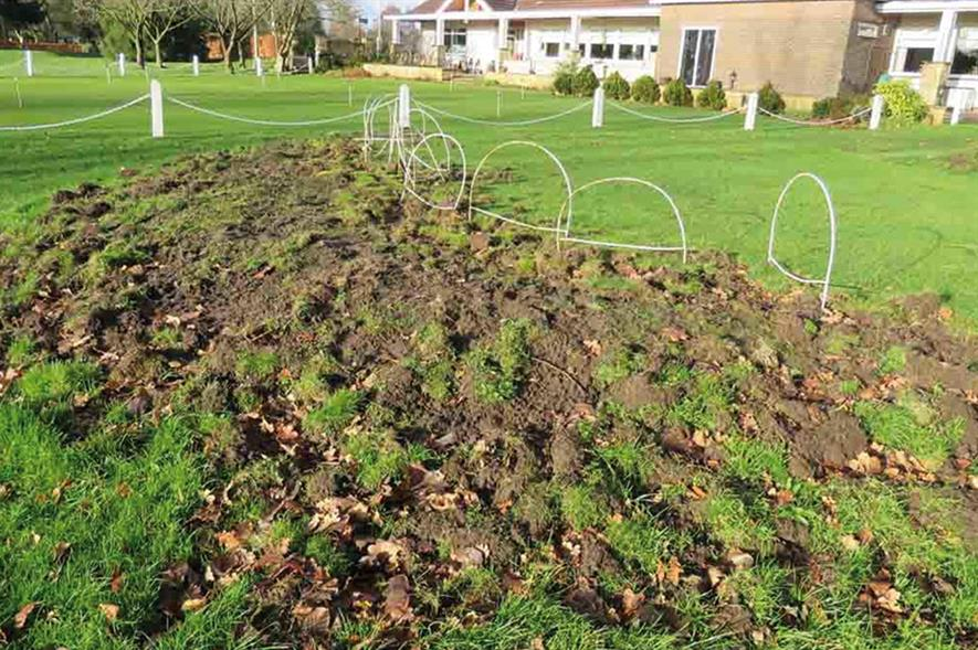 Chafer grub damage: pest can render sports facilities unplayable and destroy lawns - image: HW
