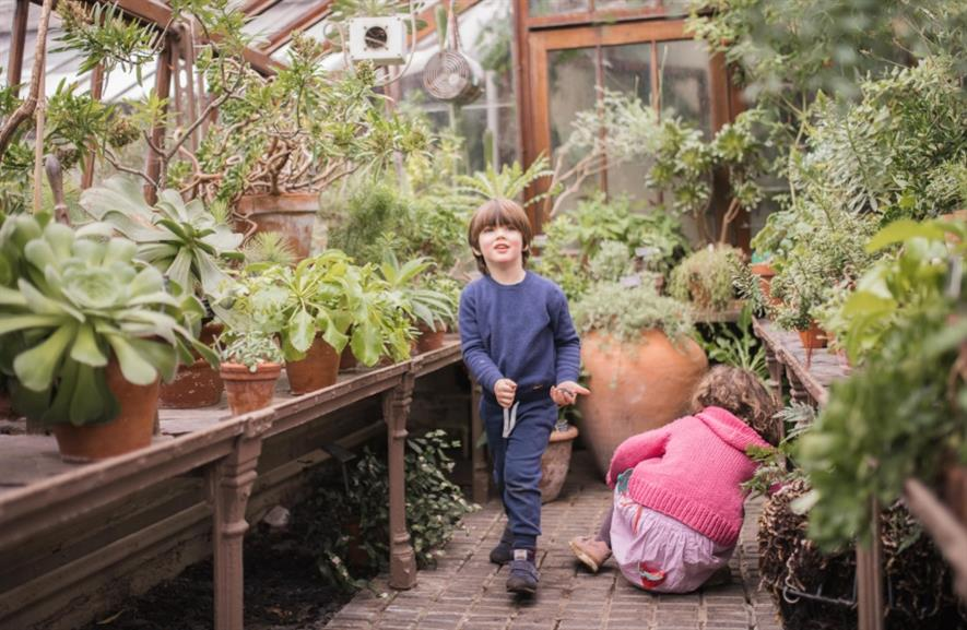 Children visiting one of the glasshouses. Image: Chelsea Physic Garden