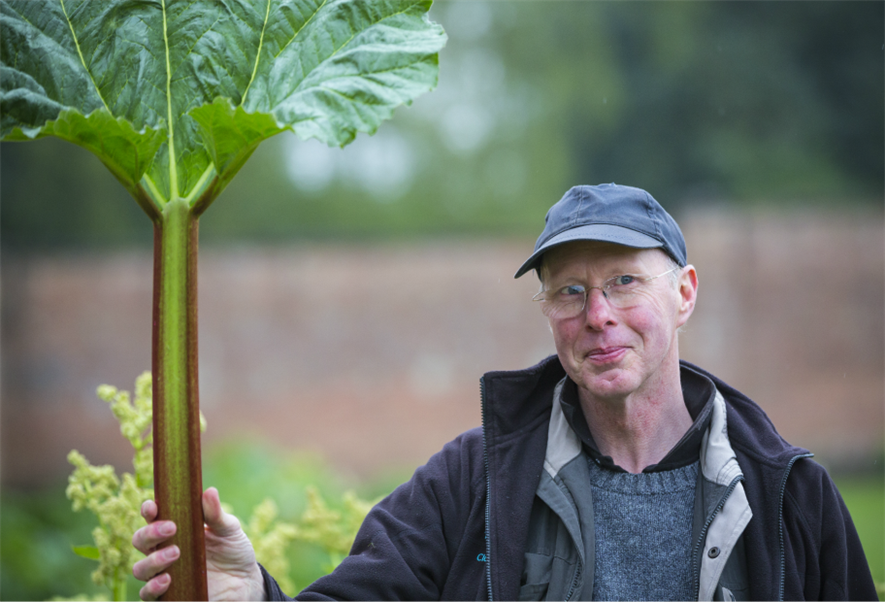 Chris Margrave with some of the heritage rhubarb Pic: Chris Lacey