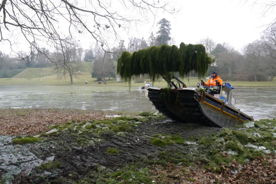 Tim Rayfield extreme weeding at Claremont. Image: National Trust/ Dee Durham