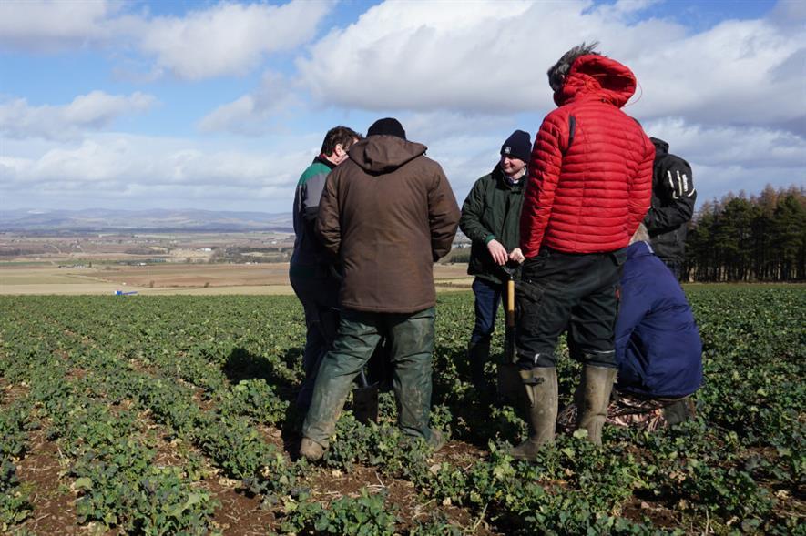 The Soil Regenerative Group shares best practice on revitalising soil health - credit: SAC