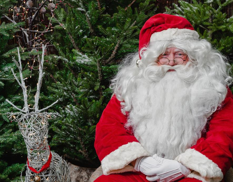 Dobbies Christmas launches