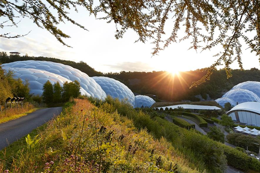 A carpet of wildflowers will greet visitors approaching Eden. Image: Hufton+Crow