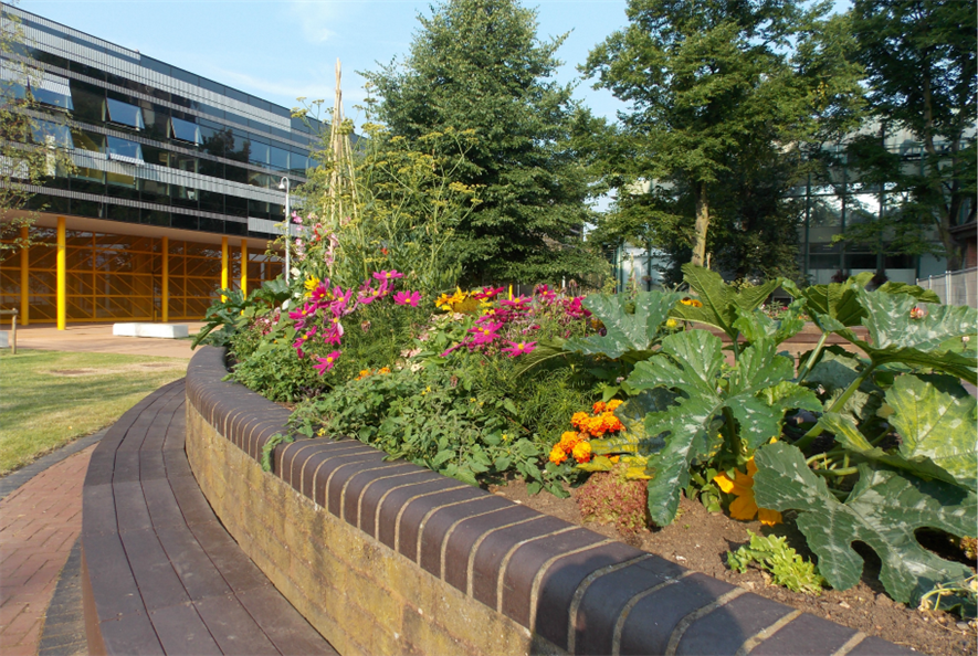 Edible Campus at Coventry University.