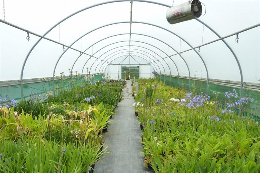 Evolution Plants. Image: Supplied
