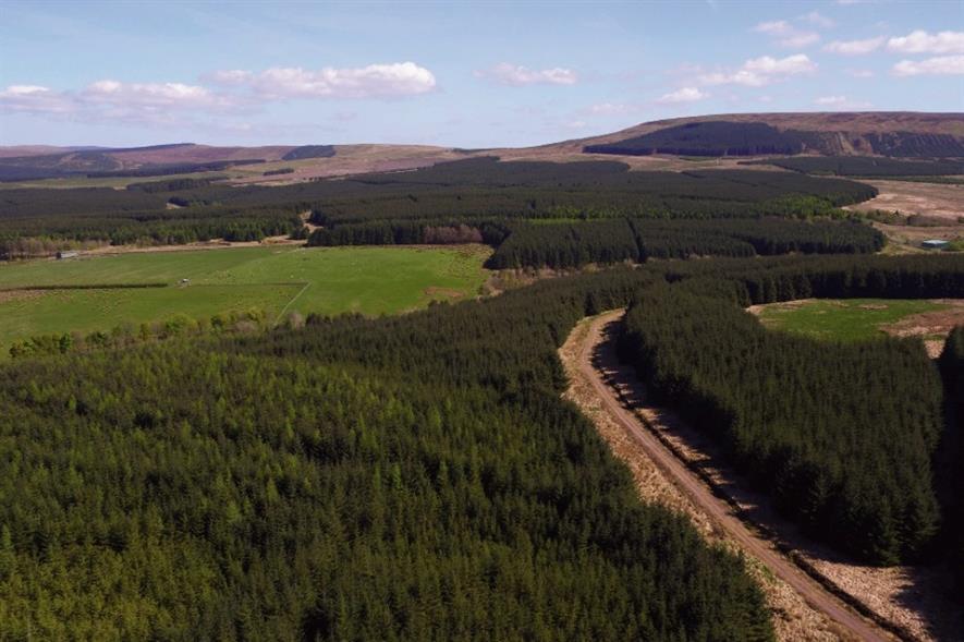 Image: John Clegg & Co / Tilhill Forestry