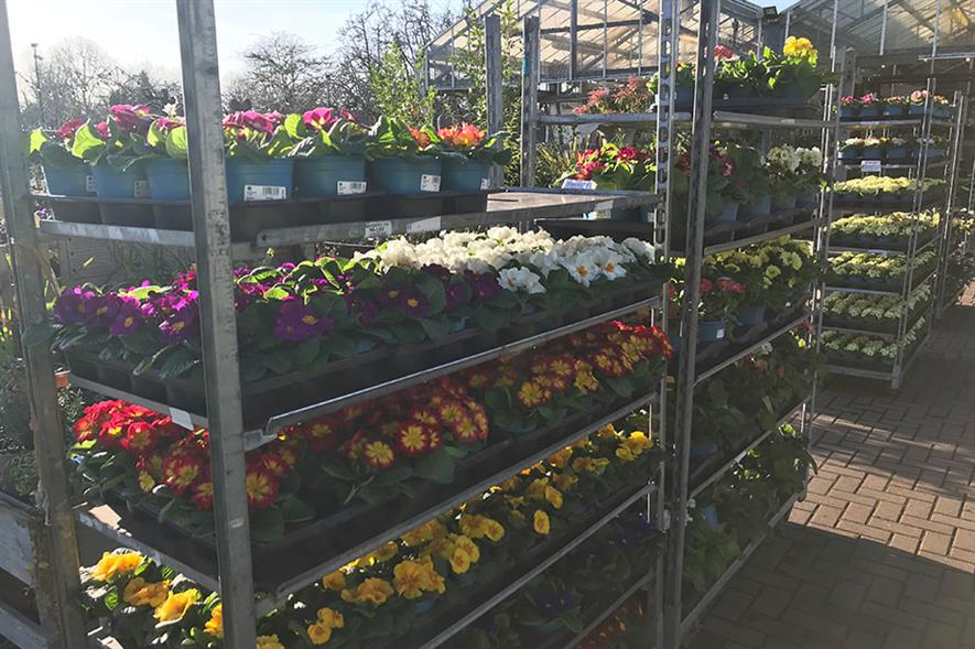Garden Centres Reopening Ahead Of Coronavirus Lockdown Easing Now Number In Double Figures Horticulture Week