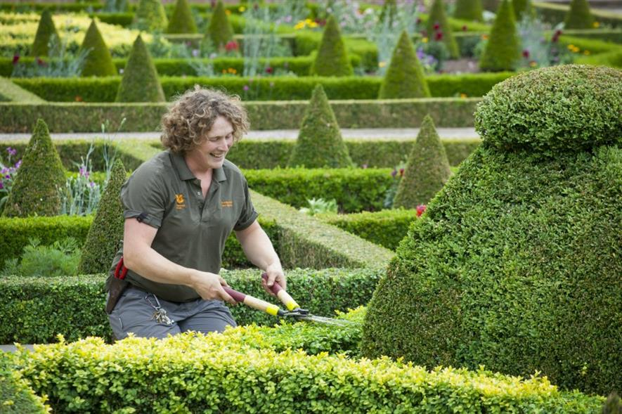 Clipping the parterre at Hanley Hall. Image: NT/Jonathan Buckley