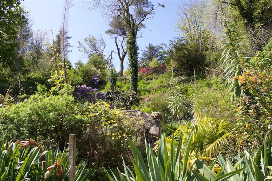 Achamore Gardens - image: Gigha Heritage Trust