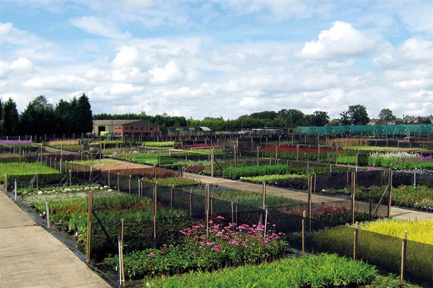 Image: Glendale Horticulture