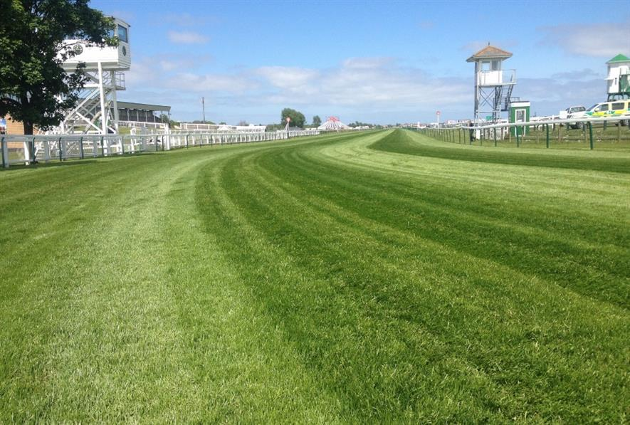 Great Yarmouth Racecourse uses Rigby Taylor products. Image: Rigby Taylor