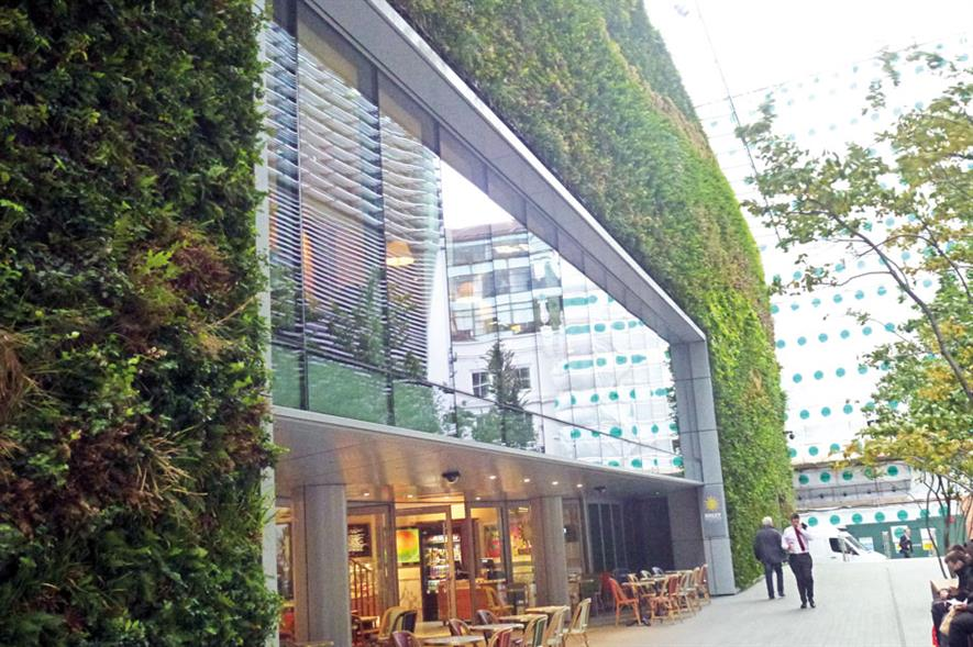 Greening urban landscapes can help people get back in touch with nature, says Dr Cameron