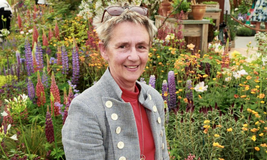 Sarah Eberle on this year's Hillier display at RHS Chelsea. Image: Julian Dodd/HW