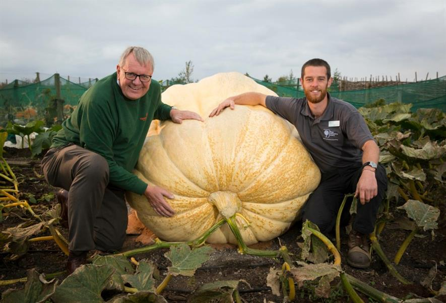 Paul Hansord horticultural director, Thompson & Morgan (left) with Matthew Oliver and the pumpkin. Image: RHS/Suzanne Plunkett