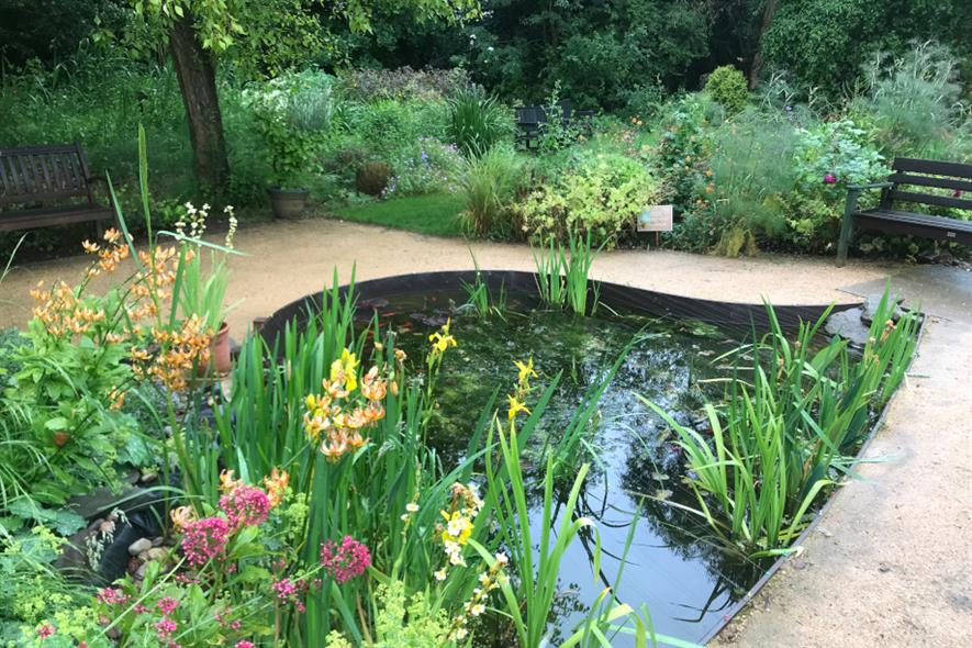 Fish pond in the courtyard garden - credit: Martineau Gardens