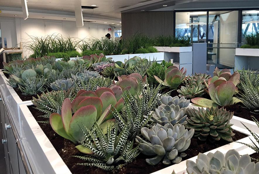 Nurture Landscapes Interior planting, Swiss Re offices, London - image: BALI