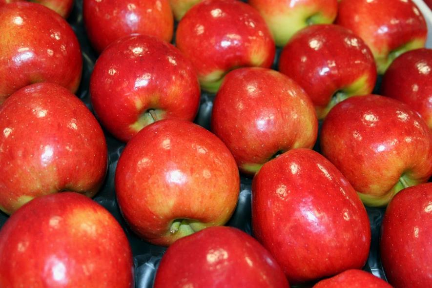 Jazz apples from Clockhouse Farm - image: HW