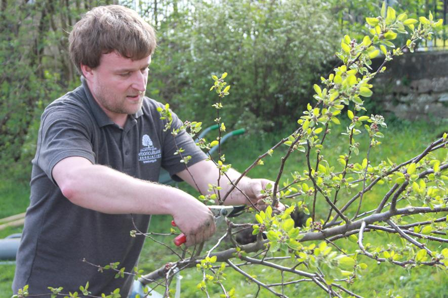 Arboricultural Association's new CEO John Parker - credit: Arboricultural Association