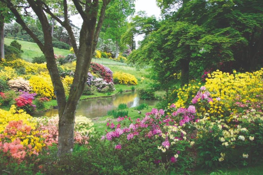 Leonardslee following restoration earlier this year. Image: Leonardslee Lakes & Gardens