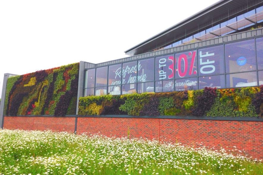 New living wall at Barker & Stonehouse. Image: Supplied
