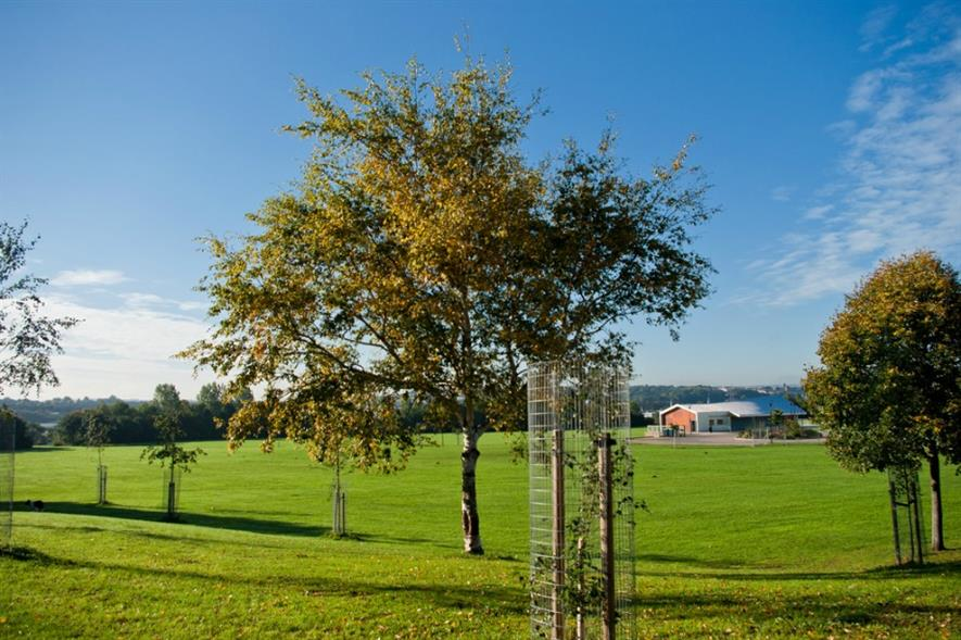 Netham Park in Bristol where the city council proposes a complete funding cut from 2019/20. Image: Andrew Bennett/ Flickr