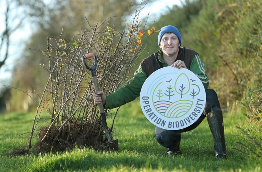 Bryan Daniels, an award-winning dairy farmer from Co Kilkenny - credit: Glanbia