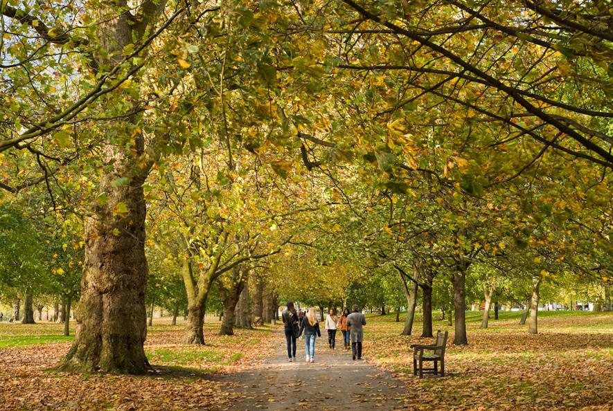Urban parks help to make cities liveable. Image: Copyright The Royal Parks